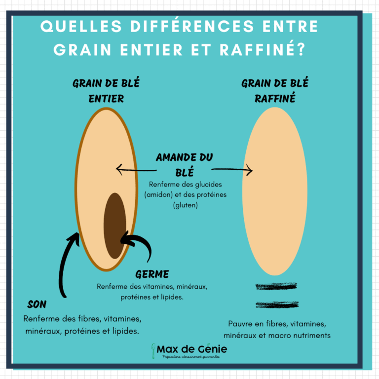Farine raffinéE vs farine intégrale